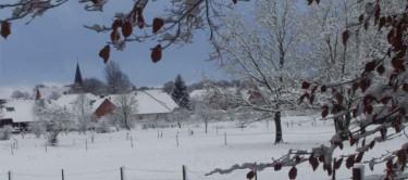 Winter in Liebenau